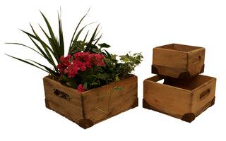Set of 3 Pine Box Sm. w/ Metal Trim-Wald Imports