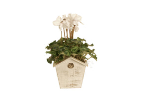 "4.75"" Whitewash Wood Birdhouse Planter-Wald Imports"