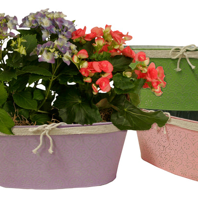 "Double 6"" Metal Planter with Butterfly Accents-Wald Imports"