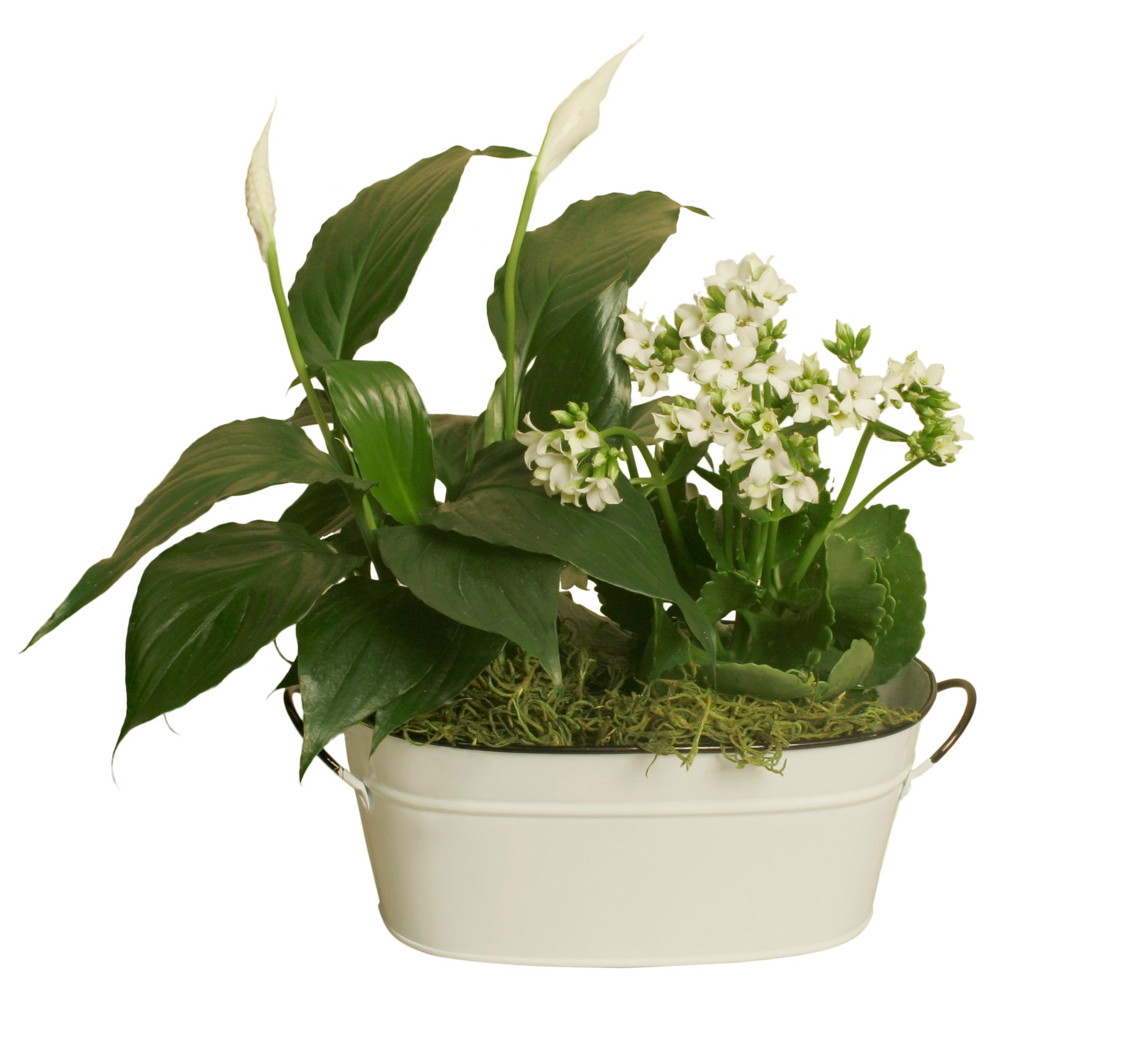 "Double 4"" Pearl White Metal Planter-Wald Imports"
