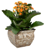 "5"" Geometric Gold Metal Planter-Wald Imports"