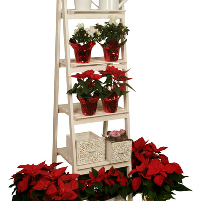 5 Shelf Wood Ladder Plant Stand-Wald Imports