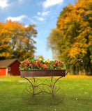 Metal Push Flower Cart-Wald Imports