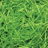 Spring-Fill Veryfine Cut Paper Shred, 10lbs Lime Green-Wald Imports