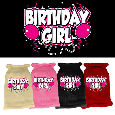 Birthday Girl Screen Print Knit Dog Cat Puppy Pet Sweater Winter Apparel