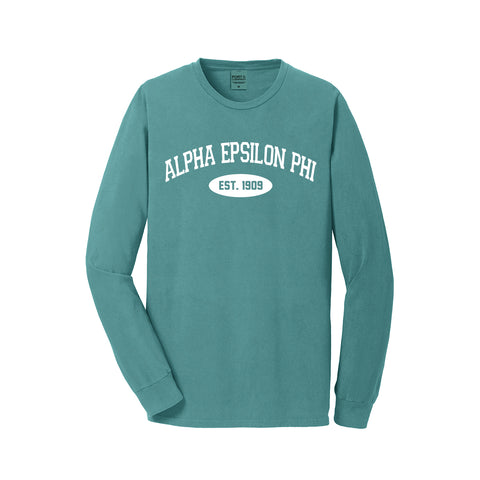 Alpha Epsilon Phi Long Sleeve Vintage T-Shirt