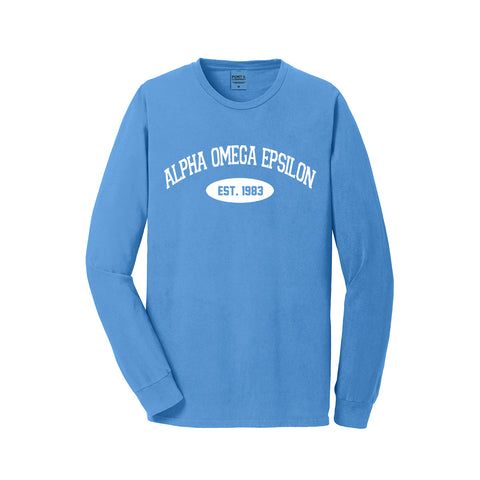 Alpha Omega Epsilon Long Sleeve Vintage T-Shirt