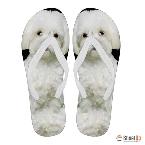 Maltese Flip Flops For Women-Free Shipping