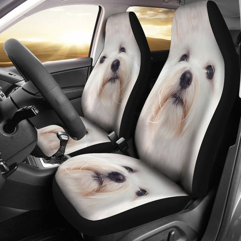 Coton de Tulear Dog Print Car Seat Covers-Free Shipping