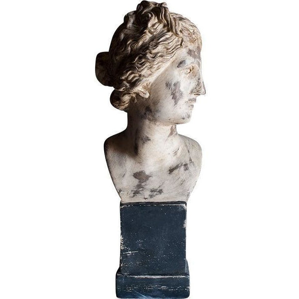 Objects & Accessories - Neoclassical Bust, Venus De Medici