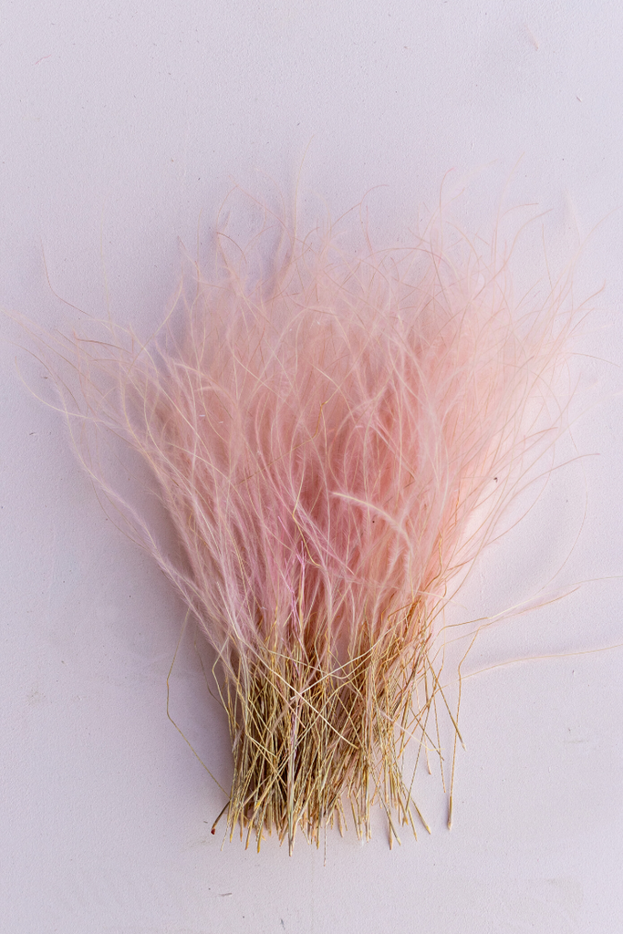 Pink Feather Grass