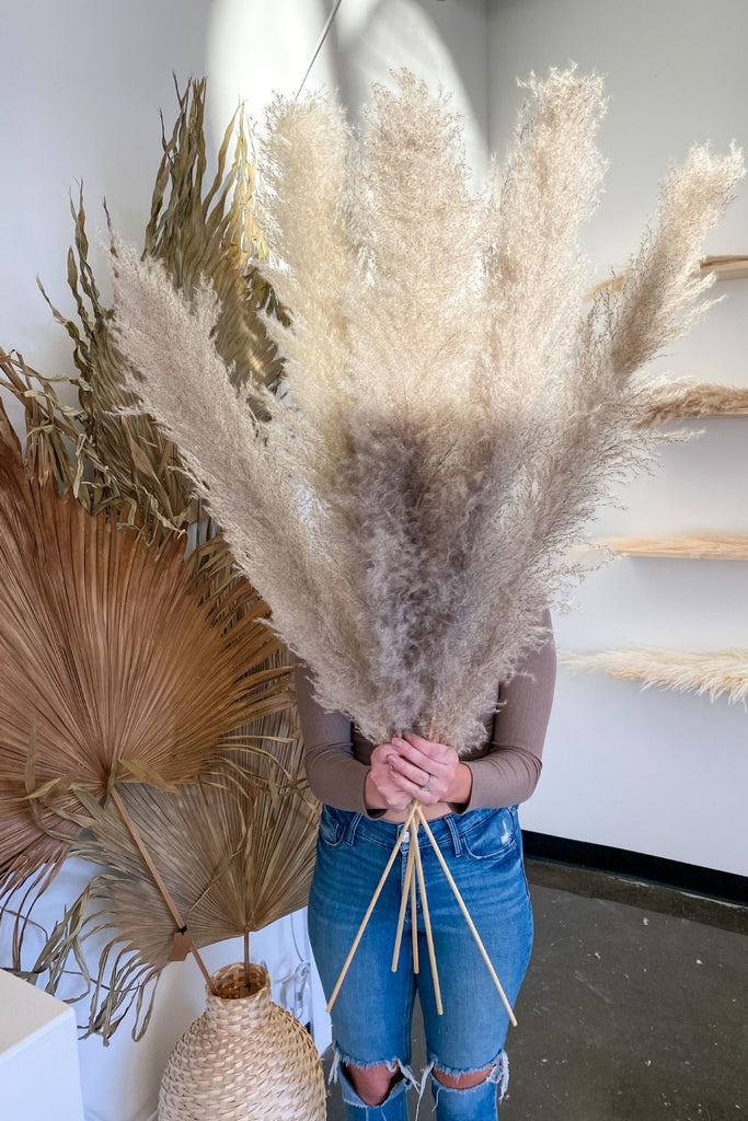 PAMPAS GRASS - Type 1 Natural (5 Medium Stems) - LUXE B OFFICIAL