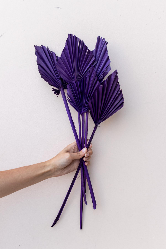 Natural Sun Spears Palm Leaves Deep Purple- 10 Stems