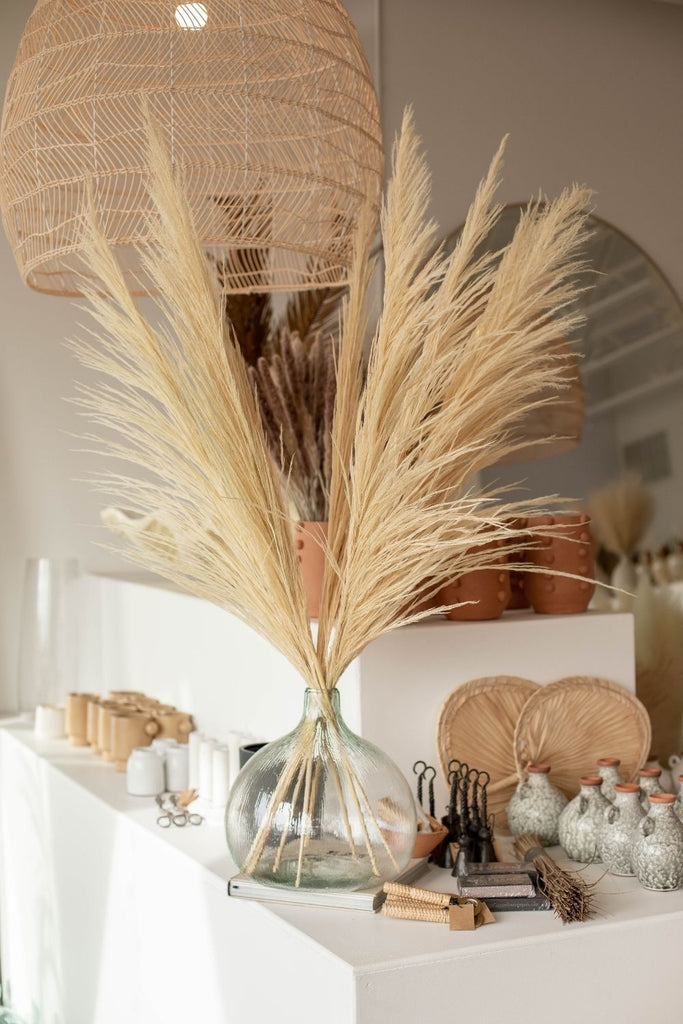 "Type 8 ""New Bud "" Natural Nude  8 Stem PAMPAS GRASS - LUXE B Pampas Grass"