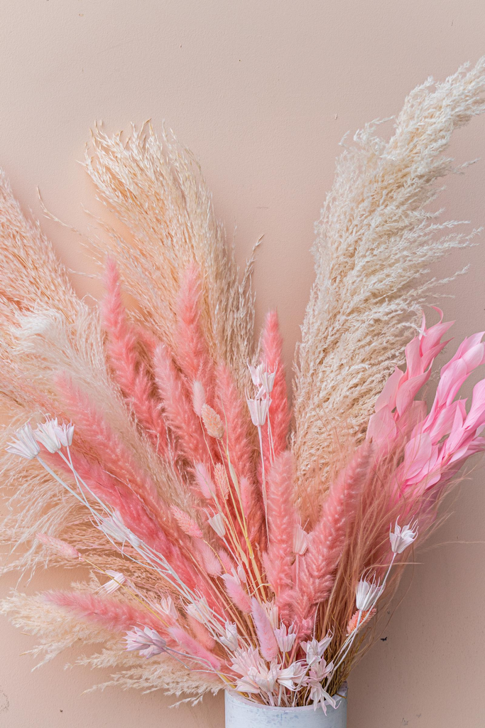 Solidago Grass Bright Pink