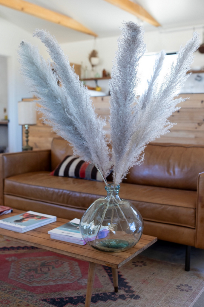 PAMPAS GRASS - Type 1 Natural - LUXE B OFFICIAL