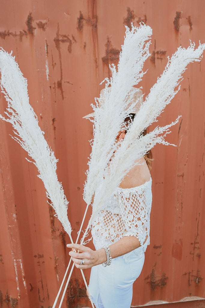 PAMPAS GRASS (3 Stems)- Type 2 Bleached White