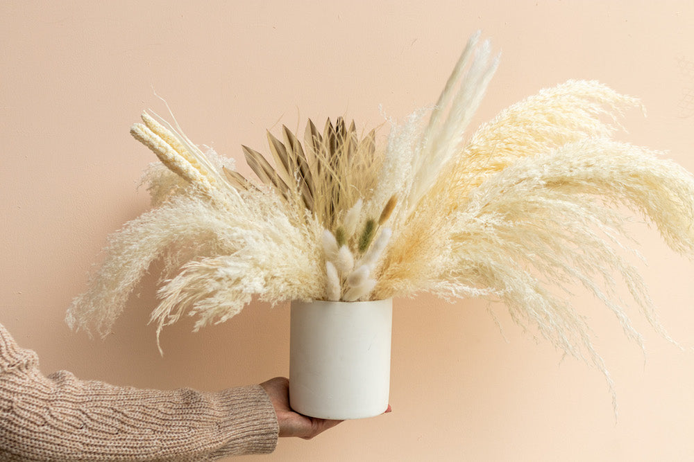 Pink Feather Grass - LUXE B OFFICIAL
