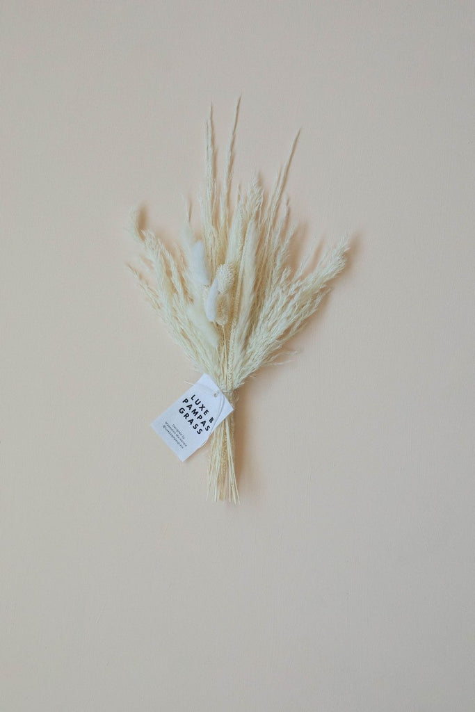 VASE TOPPER BLEACH WHITE - LUXE B PAMPAS GRASS
