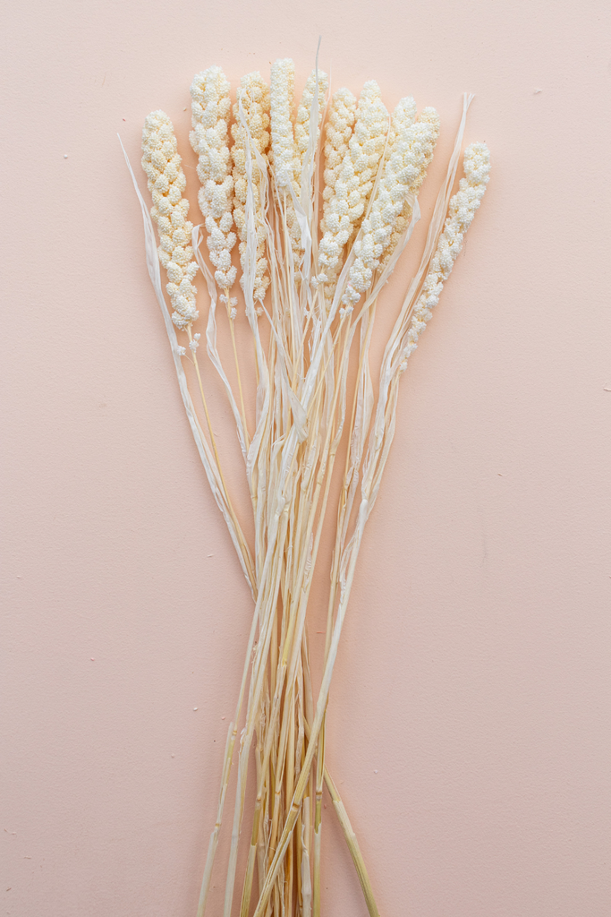 Cali Wheat Bleach White - LUXE B PAMPAS GRASS