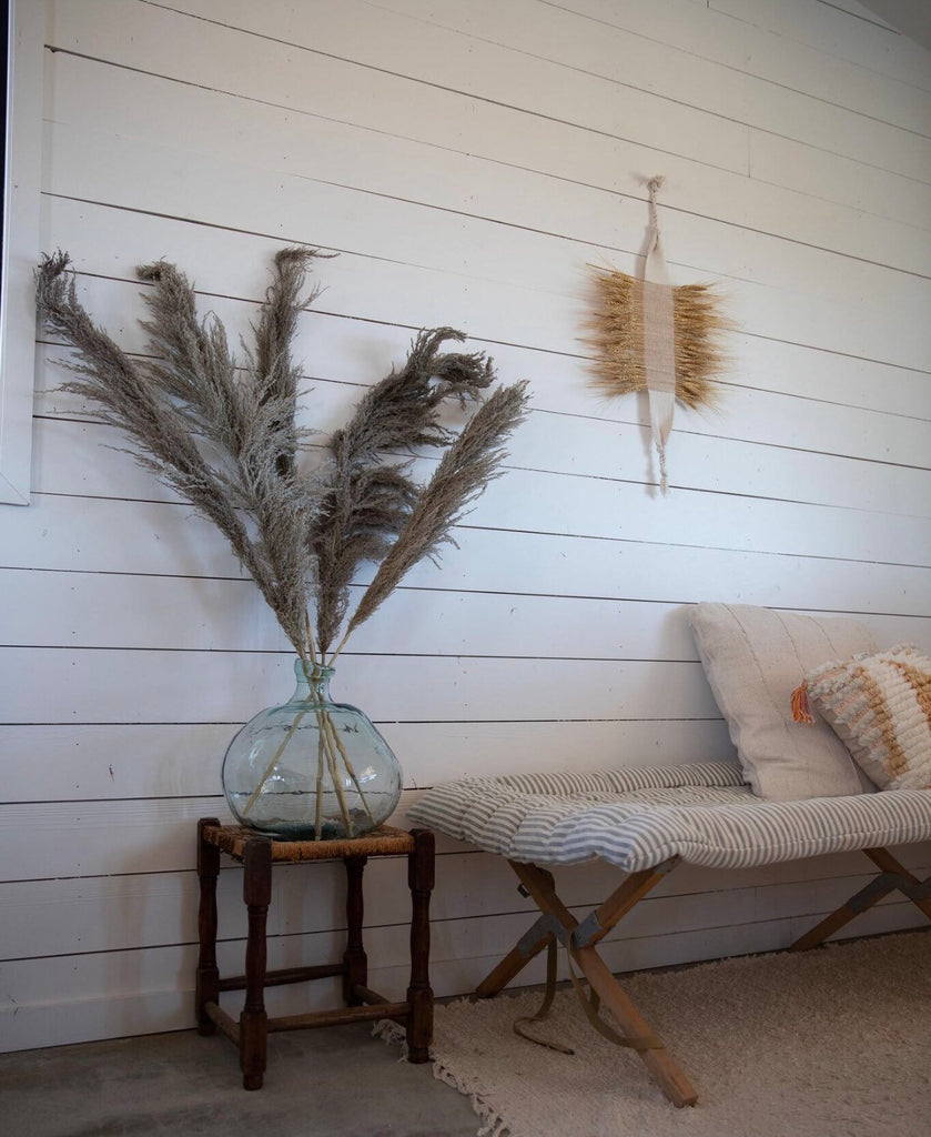 PAMPAS GRASS Type 2 - Natural - LUXE B PAMPAS GRASS