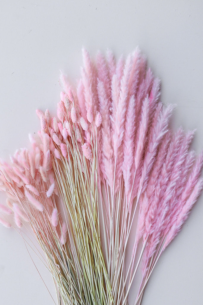 Pink Dried Floral Pampas Promo Pack