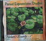NATURE'S BOUNTY 1 PANED EXPRESSIONS Pattern CD + BONUS