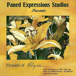 FLOWERS OF ELYSE Paned Expressions Pattern Book On CD Floral