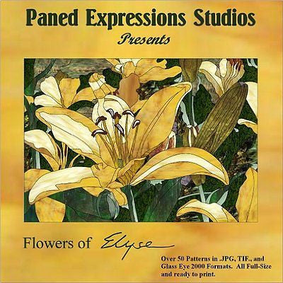 FLOWERS OF ELYSE Paned Expressions Pattern Book On CD Floral BONUS