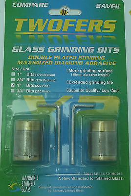 2 Grinder Bits Diamond 1 inch  220 Fine Aanraku 2 fers Fits MOST Inland Glastar