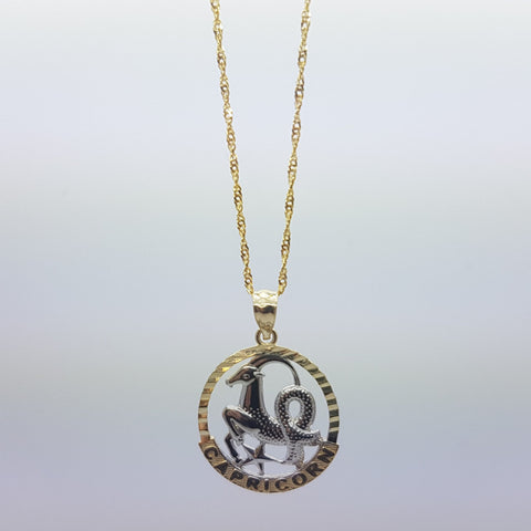10k Yellow Gold Rope Chain Capricorn Necklace