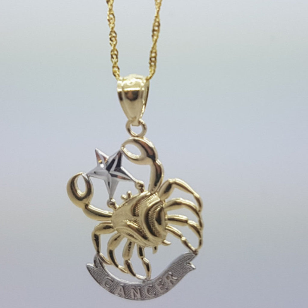 Real 10K High Polish Solid Yellow Gold Zodiac Sign Cancer Pendant 10K Rope Chain Necklace - Solid Gold Online