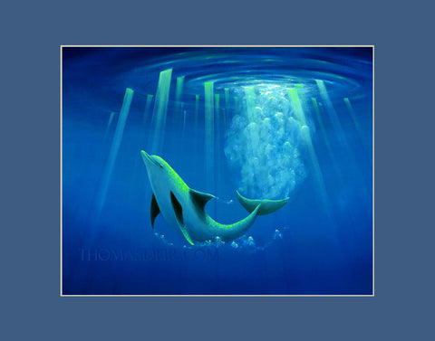 Arc of the Dolphin Hawaii art prints gift print