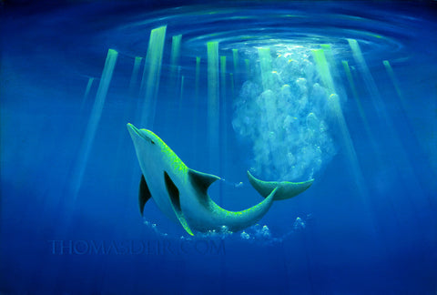 Arc of the Dolphin Painting by Hawaii Artist - Holiday Art Sale!
