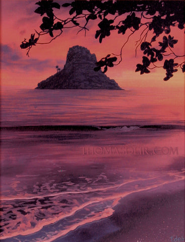 Chinaman's Hat Leaves Painting by Hawaii Artist Thomas Deir