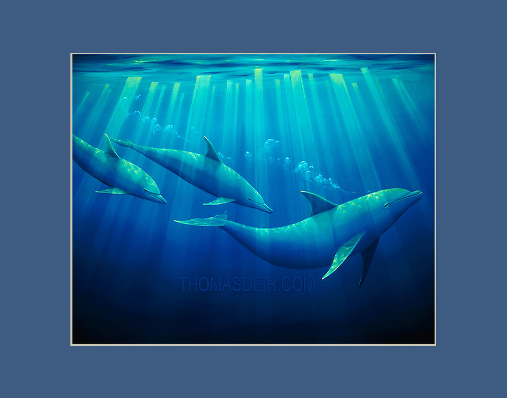 Emerald Forest Dolphins Hawaii art prints gift print