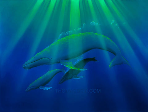 Heavenly Humpbacks Whale Painting by Hawaii Artist Thomas Deir