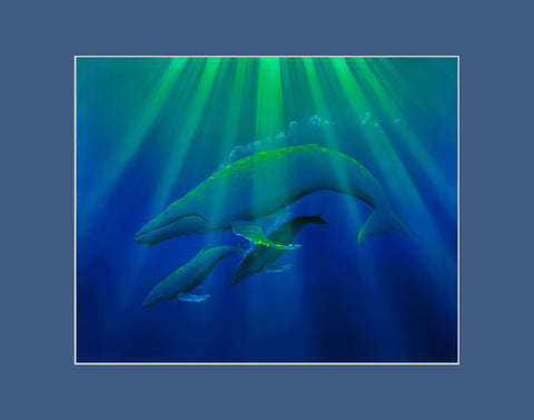 Heavenly Humpbacks Whale Hawaii art prints gift print