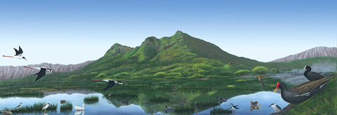 Holiday Sale! Kaelepupu Wetland 20x60 GW Giclee