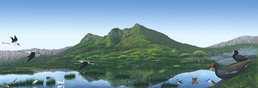 Kaelepulu Wetland personalized giclee canvas print