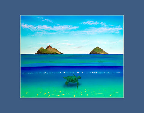 Lanikai Turtle Hawaii art prints gift print