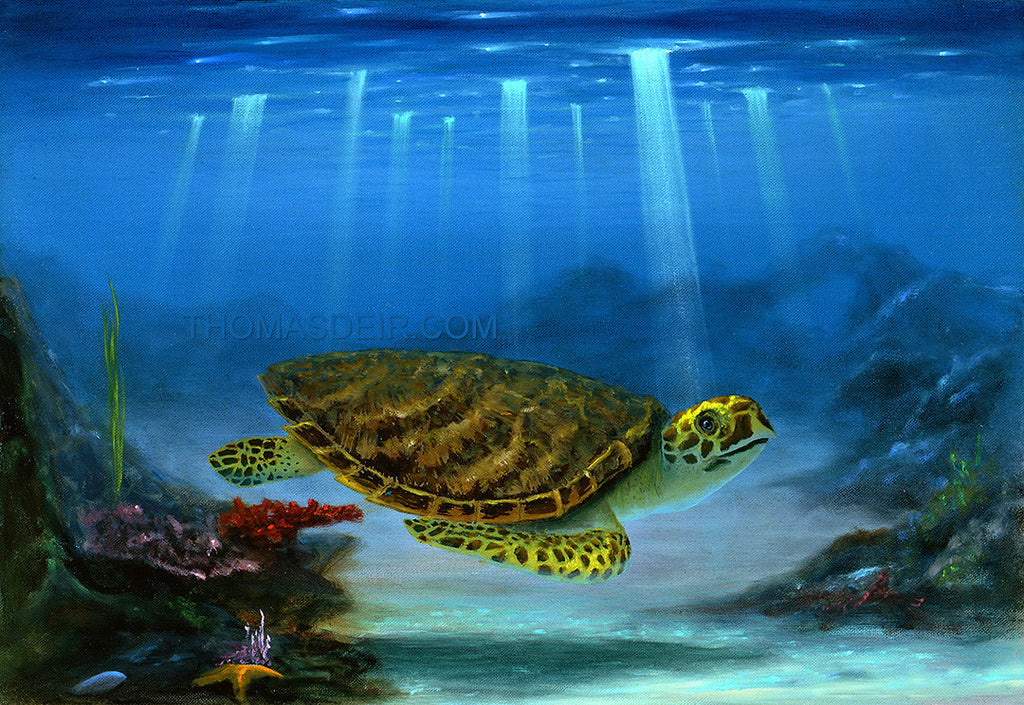 Myrtle the Turtle Giclee Prints by Hawaii Artist