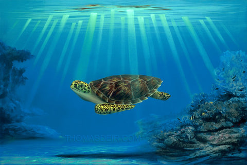 Myrtle The Turtle's Mommy Painting by Hawaii Artist Thomas Deir