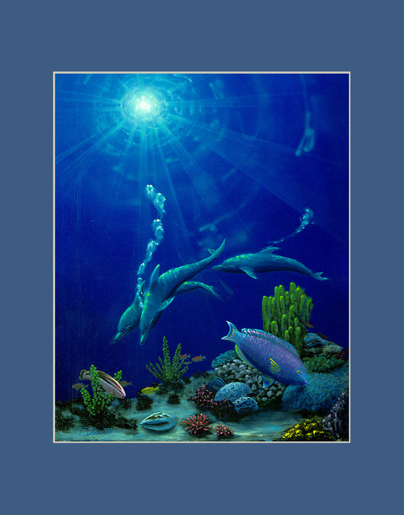 Reef Dolphins Hawaii art prints gift print