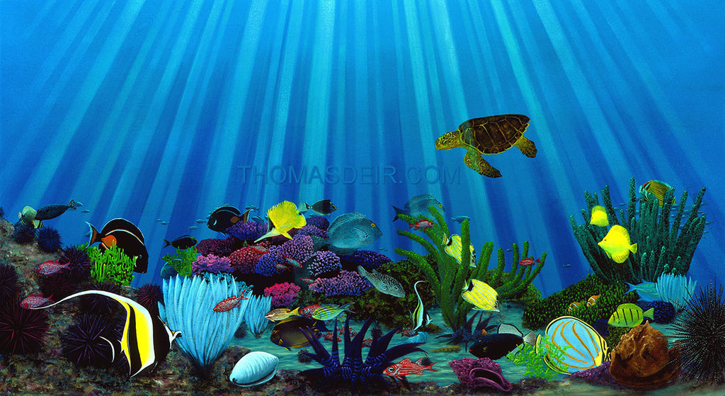 Save Our Reefs Art Giclee Prints by Hawaii Artist