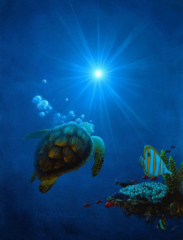 Sea the Light Turtle with Bubbles