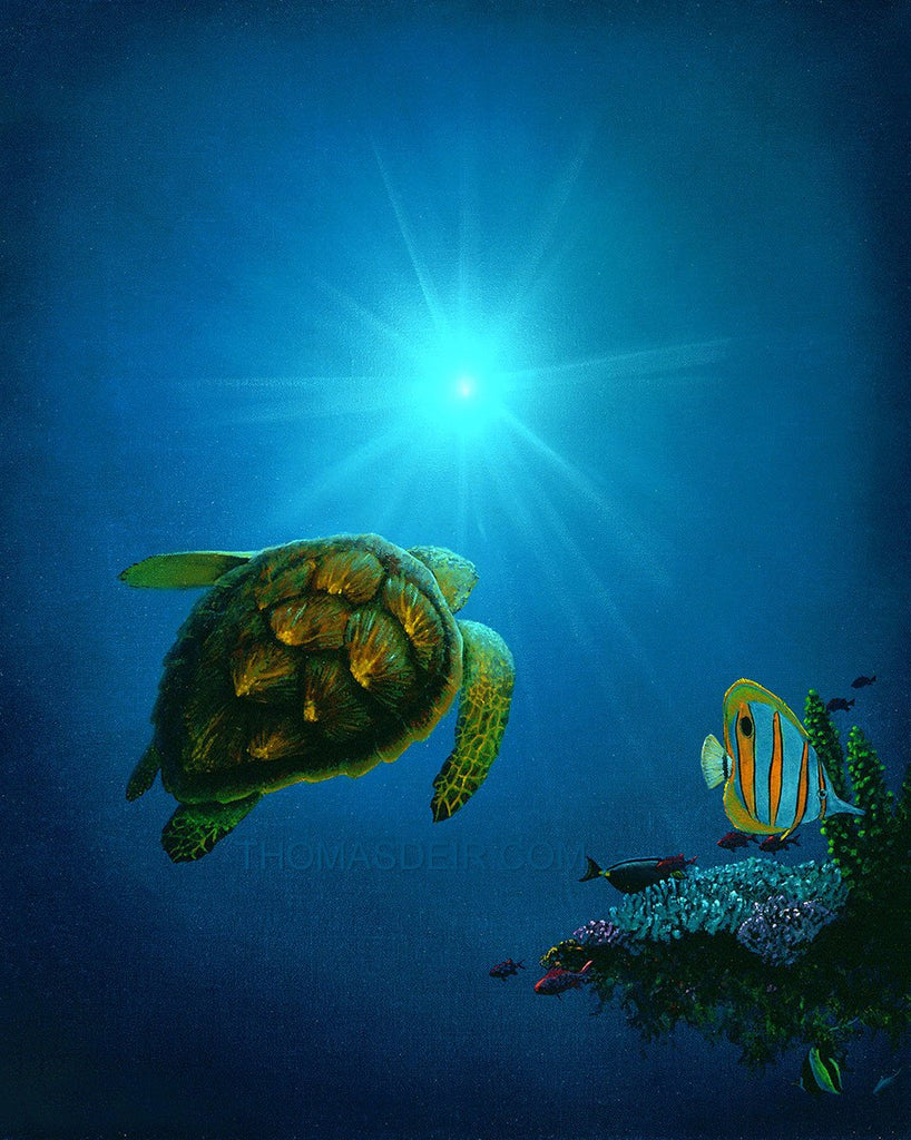 Sea the Light Turtle