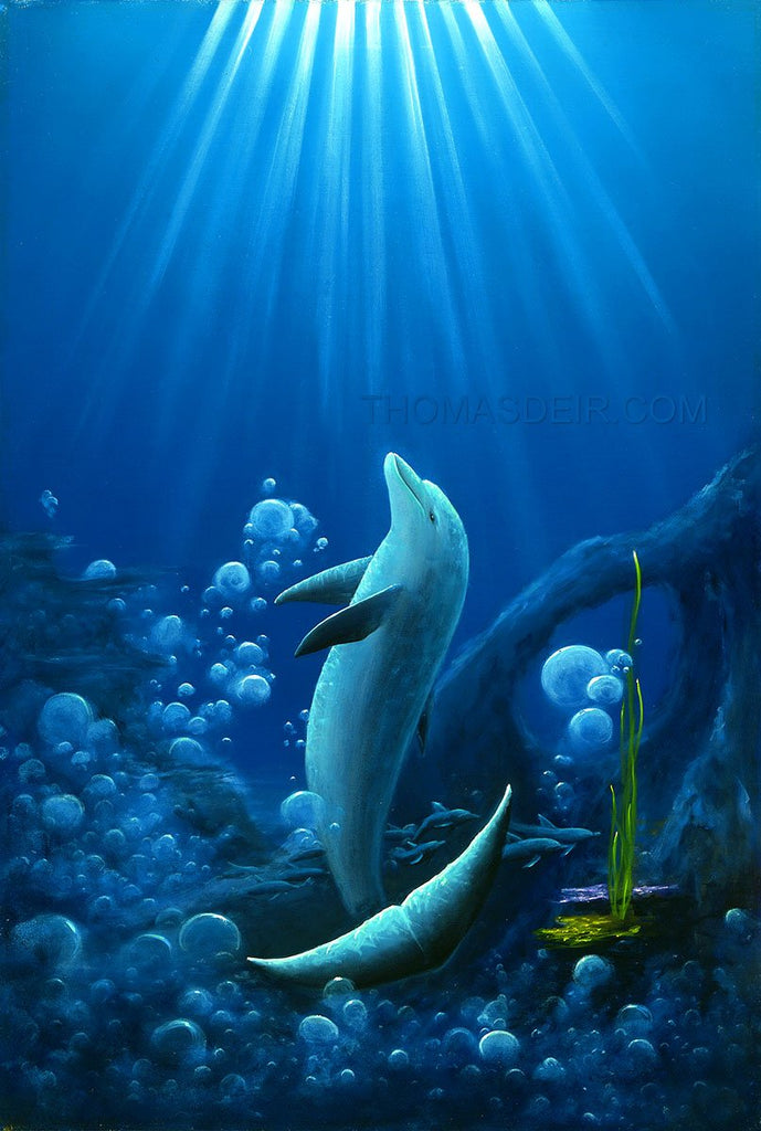 Shaka Dolphin Art Giclee Prints by Hawaii Artist