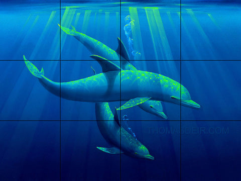 Trio of Tranquility Dolphins Tile Mural