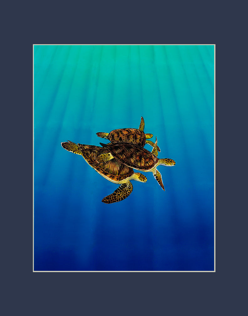 Turtle Trio Matted Print